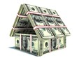 Bank. House from pack of dollar