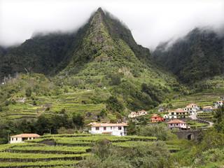 Madeira Weinbau