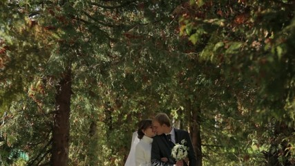 Wedding couple in autumn park.