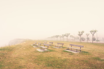 benches on a foggy cliff