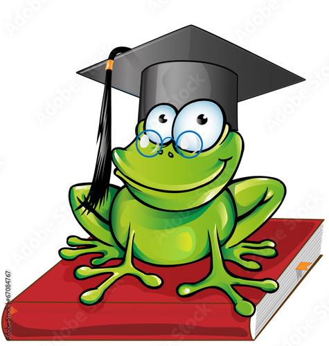 Wise frog  cartoon - 67084767