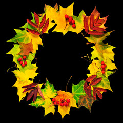 Wreath of autumn leaves isolated on black