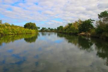 Le parc ornithologique du Teich, Gironde