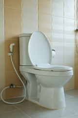 toilet bowl in house design of interior decoration
