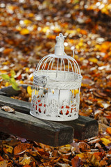 Vintage birdcage standing on wooden bench, white candles inside