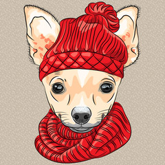 vector cartoon hipster dog Chihuahua breed smiling
