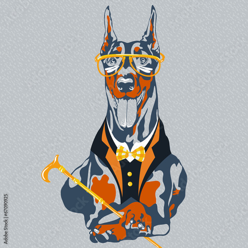 vector funny cartoon hipster dog Doberman Pinscher breed - 67090925