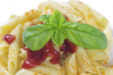 pasta macaroni with spice basil