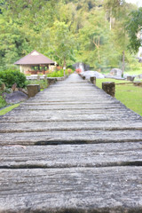 Wooden walking path
