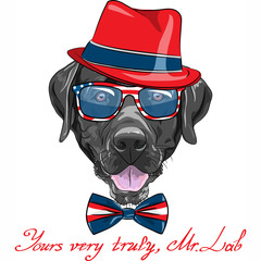 vector funny cartoon black hipster dog Labrador Retriever