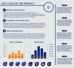 Editable template - product lifecycle- charts, diagrams,  icons