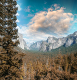 Wonderful National Park scenario. Mountain landscape with trees poster