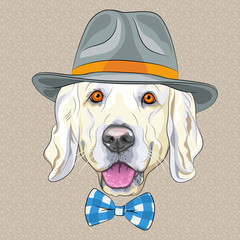 vector funny cartoon hipster dog Golden Retriever