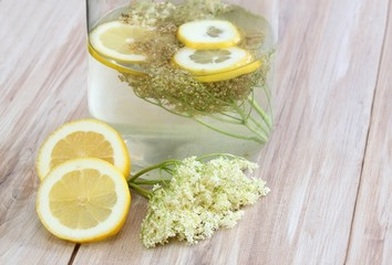 Elderflower lemonade, Sambucus nigra
