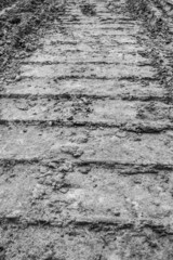 Track of a tractor on plowed field