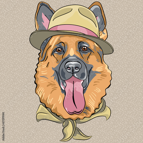 vector funny cartoon hipster dog German shepherd - 67099144