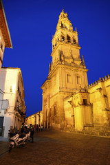 Old town and the tower of the Cathedral of Cordoba.