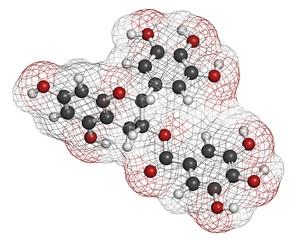 Epigallocatechin gallate (EGCG) green tea polyphenol molecule.