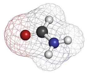Formamide (methanamide) solvent molecule.