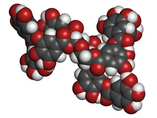 Tannic acid molecule (one isomer shown). Type of tannin.
