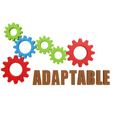 Adaptable gear