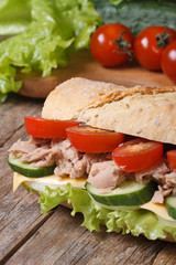 sandwich with tuna and vegetables on background of ingredients