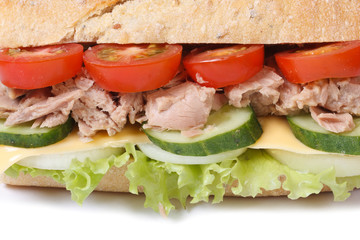 tuna sandwich with vegetables and cheese isolated macro