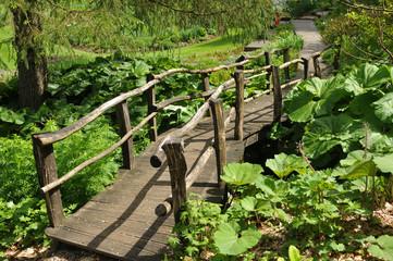 pont en bois dans le jardin
