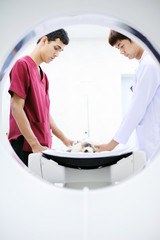 veterinarian and assistant working in CT scanner room