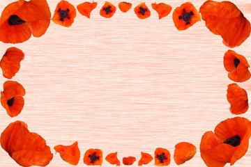 Background, Poppies, Textures, Copy space