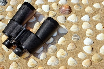 Vintage Binoculars, Compass and Seashells. Marine Background.