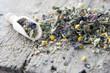 Leinwanddruck Bild - Getrocknete Blüten und Kräuter