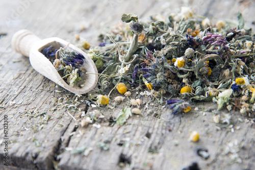 Leinwanddruck Bild Getrocknete Blüten und Kräuter