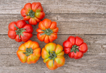 Italian Costoluto tomatoes on garden bench - traditional variety