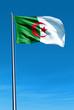 Algeria flag waving on the wind