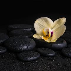 Beautiful spa concept  of yellow orchid (phalaenopsis), zen ston