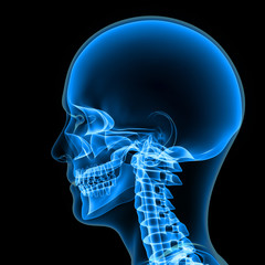 Body with Skull