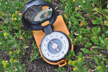 Compass in the grass.