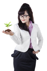 Asian businesswoman holds plant