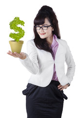 Businesswoman holds investment tree 1