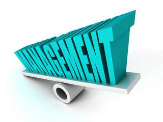 MANAGEMENT concept word on balance
