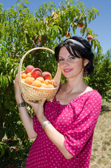Cheerful brunette picking fruits