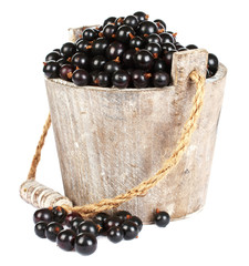 Black currant in a wooden bucket on white background