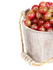 Ripe gooseberry in wooden bucket on white background