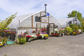 Outdoor nursery Willamette valley Oregon.
