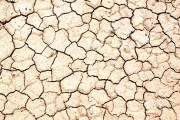Soil dry