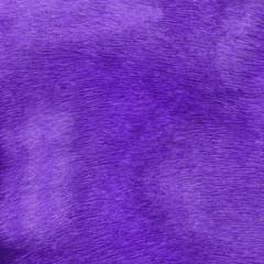 violet faux fur closeup