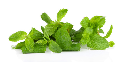 Fresh mint, isolated on white