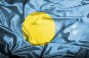 Palau waving flag