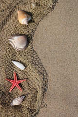 Shell and red starfish on fishing net on sand